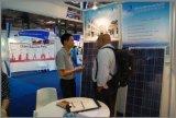 los mono paneles solares fotovoltaicos 90W para la luz de calle de energía solar