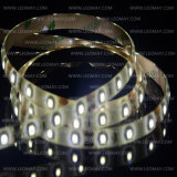 Marca LED flexível DC12V SMD3528 Bi-Color Dimmable LED Strips Light