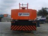 Benutzter LKW-Kran (TG-800E-3-10101)