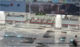 空港のための機密保護の歩行者のEゲート