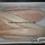 830~2000g de bevroren Filet van de Haai van Vissen Zwarte;