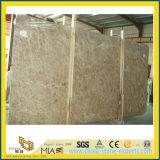Lastra di marmo chiara di Emperador per la decorazione della pavimentazione