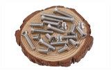 Phillips Drive Pan Head Aço inoxidável auto-perfuração parafuso