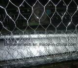 Сетка мелкоячеистой сетки нержавеющей стали Sailin