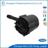Kleine Warmwasserbereiter-Pumpe Gleichstrom-24V schwanzlose sofortige mit Kopf 12m