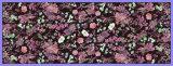 Lenço de seda de Georgette da impressão colorida feita sob encomenda de Digitas dos testes padrões para mulheres