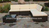 Meubles extérieurs de jardin de rotin de PE et jeu extérieur de sofa de rotin