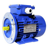 Industry를 위한 3 단계 Asynchronous Motor (Y2 시리즈)