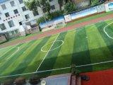 Gazon artificiel classique d'herbe de forme de C pour le terrain de football