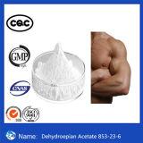 Acetato anabolico CAS 853-23-6 di Dehydroepian degli ormoni steroidi