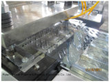 Dpp Serien-Blasen-Verpackungsmaschine