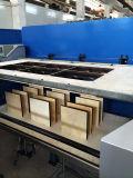 Hg-B100t vollautomatische Kunststoffgehäuse-Ausschnitt-Maschine