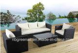 Jeu en osier de sofa de meubles extérieurs de rotin de jardin