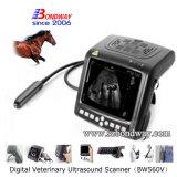 Varredor veterinário portátil do ultra-som da Pulso-Parte superior