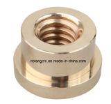 Noix en laiton Tr28X5 de vis de bride d'Unpunched d'en cuivre trapézoïdal d'amorçage