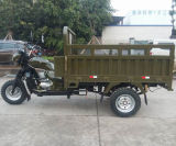 un motociclo pesante di 2016 250cc Trike