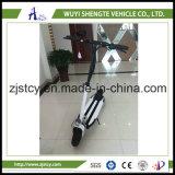 中国の卸し売り高品質の安い折るスクーターのポータブルのスクーター