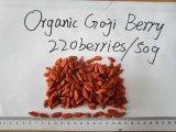 Récolte organique 20015 de baie de Goji