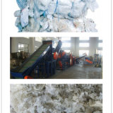 Plástico que recicl a linha de esmagamento e de lavagem