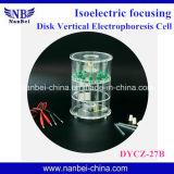 Elektrophorese-Zelle/Nukleinsäure, die Elektrophorese sequenziell ordnet