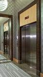 يجعل في الصين ناعم مسافر مصعد