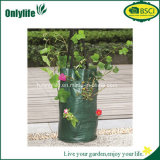 Utili ecologici di Onlylife coltivano il sacchetto della pianta di giardino del sacchetto