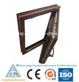 Extrusions en aluminium courantes de Windows de remplacement de Windows
