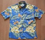 Männer schließen Hülse gedruckte Strand-Hemden kurz