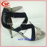 Sandali delle donne di modo dell'alto tallone