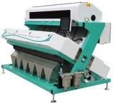 Clasificador de color óptico de cacahuete CCD / máquina clasificadora