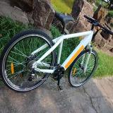 Велосипед спрятанный MTB батареи электрический Rseb-304