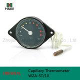 Wza-St/10 Capillary Tube Thermometer met 0-120c