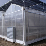 최신 상업적인 정원 PC 녹색 집