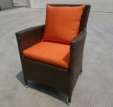 Furniture屋外のWicker Furnitureの庭Leisure Chairs (2039C)
