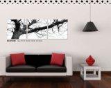 Wand-Kunst-dekorativer Farbanstrich
