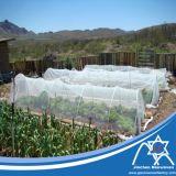 Anti prodotto non intessuto UV per il coperchio di agricoltura