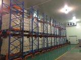 Kaltlagerungs-Raum-Entwurfs-Nahrungsmittelkühlraum für Obst und Gemüse