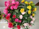 Прямые связи с розничной торговлей фабрики Silk цветка