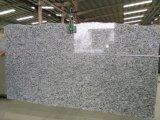 カシミールの白い花こう岩の平板、磨かれたカシミールの白のカウンタートップ