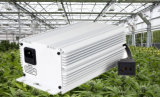 Heiße Verkaufs-Gewächshäuser 315W CMH Digital wachsen helles Vorschaltgerät für Wasserkultursysteme