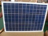 Populäres 12V 30W Polyhaustier lamellierter Sonnenkollektor