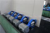Pneumatischer Stellzylinder-Oblate-Drosselventilcw-Cer u. ISO-Bescheinigungen (D671X-10/16)