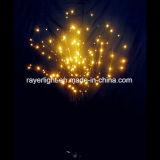 Het Decor van het Huis van de nieuwe LEIDENE van de Aankomst Lichten van de Bloem