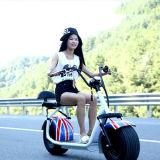 工場価格の都市ココヤシ1000W Harleyの電気スクーター