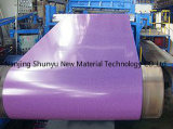 El color de Shandong cubrió las bobinas de acero cubiertas color de acero de la bobina/del aluminio/del cinc