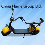 Motorino di mobilità delle 2 rotelle per gli adulti con 1000W 60V/30ah
