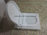 Ts 1003 정연한 변기, 유럽 U 모양 화장실을%s Non-electronic Bidet 시트카바