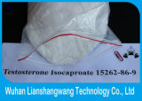 Testosterona Isocaproate CAS 15262-86-9 de los esteroides para el ciclo de corte
