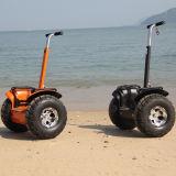 Strand-elektrischer Roller des Verkaufsschlager-elektrischer Roller-V5+