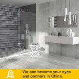 Sand-Stein-Entwurfs-rustikale Porzellan-Fliese für Fußboden-und Wand-Sande 600X600mm (SA6131/SA6132/SA6133/SA6134)